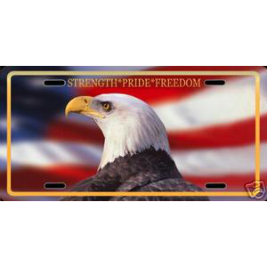 Sublimation License Plate.
